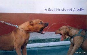 husband wife weird funzug